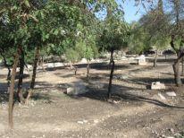 06. a parc in Jerusalem